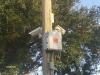 Professional-wireless-ip-surveillance-system